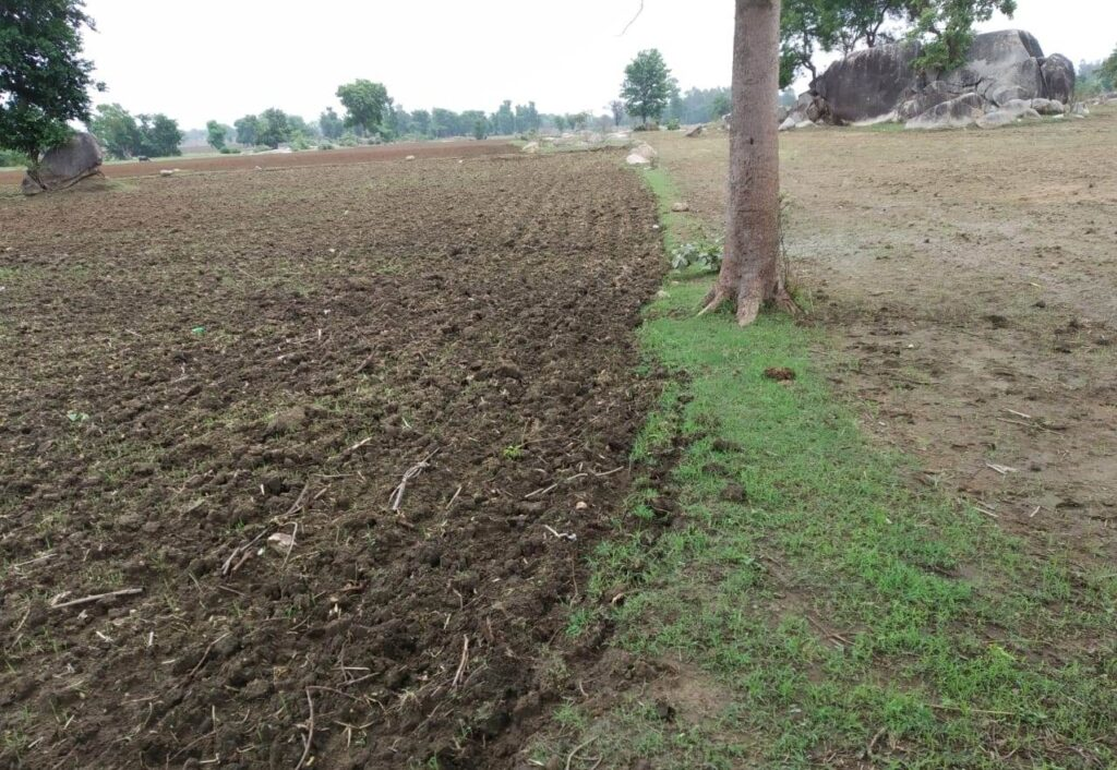 How to prepare agricultural land for farming