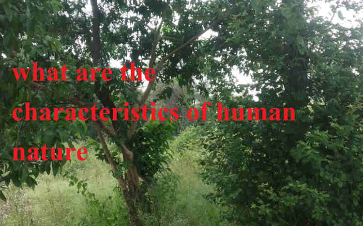 what are the characteristics of human nature